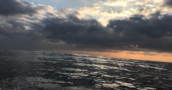 釣行記「アジ泳がせアラ釣り」2020/07/02