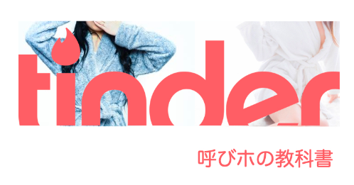 ネトナン呼びホの教科書(ホテルに女の子を呼んでベットインする裏技)100部突破!!