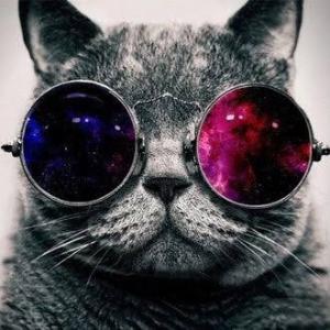ヤリ猫@インスタナンパ